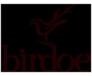 Birdoe - .zo života srnky z vtáčej perspektívy.